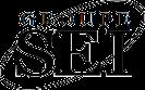 Groupe Sei Logo